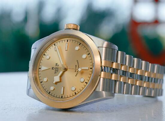 The Tudor looks very mild and luxurious with the gold and steel tone.